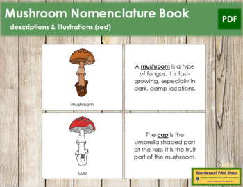 Mushroom Nomenclature Book (Red)