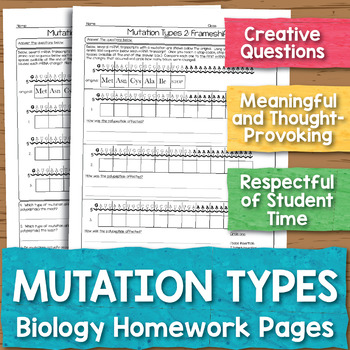 Mutation Types Biology Homework Worksheet
