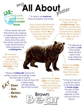 My All About Brown Bear Book / Workbook - (Forest / Woodla