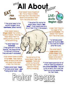 My All About Polar Bears Book - (Arctic/Polar Animals)