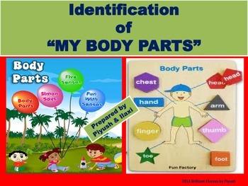 My Body Parts -Identification-Common Core ELA