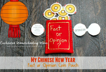 My Chinese New Year Fact or Opinion Coin Pouch