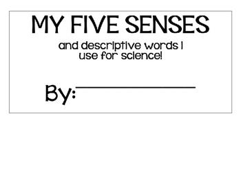 My Five Senses Flap Chart