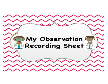 My Observation Recording Sheet