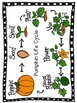 A Patch of Pumpkins Packet! {10 Literacy and Math Activities)