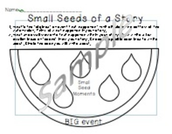 My Small Moment Seed Story