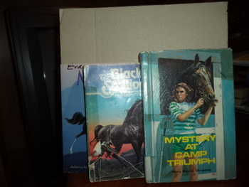 Mystery at Camp Triumph,The Black Stallion, and Disney's M
