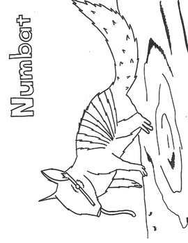 N for Numbat
