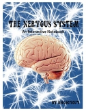 NERVOUS SYSTEM, AN INTERACTIVE NOTEBOOK