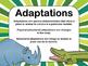 NEW  Adaptations Project NO PREP!