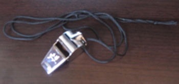 NEW SILVER METAL BALL WHISTLE gym physical education reces