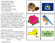 NEW YORK State Symbols ADAPTED BOOK for Special Education