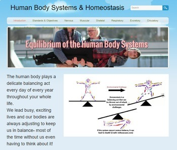 NGSS Aligned Human Body System Homeostasis Webquest