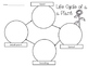 Life Cycles of Frog, Butterfly, Plant, & Ladybug Worksheet