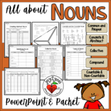 NOUNS PowerPoint and Flip-book Comprehensive and Motivating Unit!