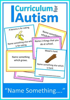 Autism Vocabulary Cards Name Something, Special Education,