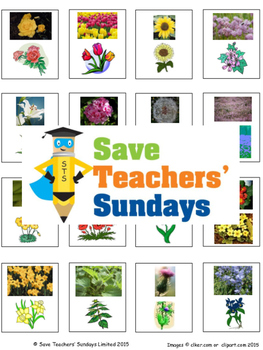 Naming common flowers and trees Lesson plan and Cards