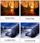 Natural Disasters: 3-Part Photo Cards