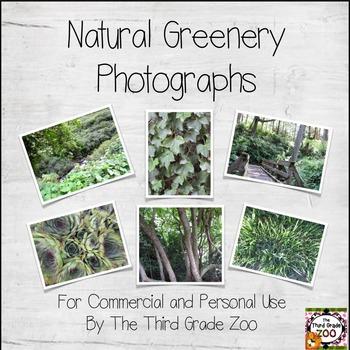 Natural Greenery Photographs