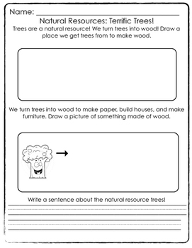 Natural Resources- Trees Worksheet