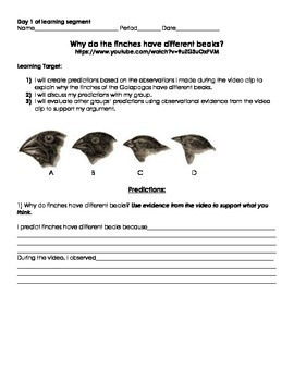 Natural Selection Assessment Materials