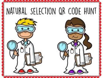 Natural Selection QR Code Hunt