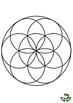 Nature mandala - Flower of Life with Spices