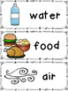 Needs and Wants Word List and Word Wall Cards