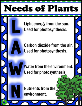Needs of Plants: LAWN Anchor Poster