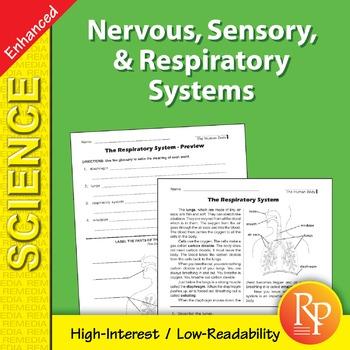 Nervous, Sensory, & Respiratory Systems - Enhanced