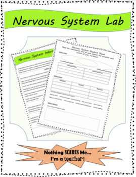 Nervous System Lab Stations