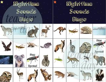 Nighttime Sound/Nocturnal Animals Bingo