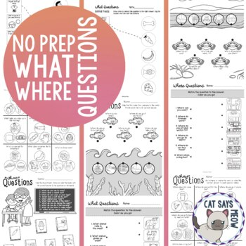 """""No Prep"" Wh- Questions (Print and Go What Where Workshee"