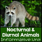 Nocturnal and Diurnal Animal Fun!