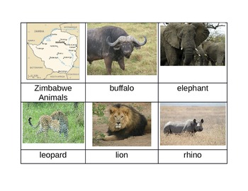 Nomenclature Cards - Animals - Africa - Zimbabwe