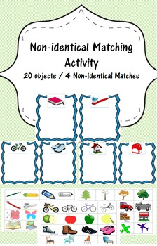 Non-Identical Matching/Sorting pack - Common Objects- Disc