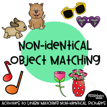 Non-Identical Object Matching! Great for Special Education!