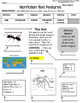 Nonfiction Text Features Assessment Ant