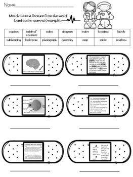 Nonfiction Text Features Quiz or Worksheet