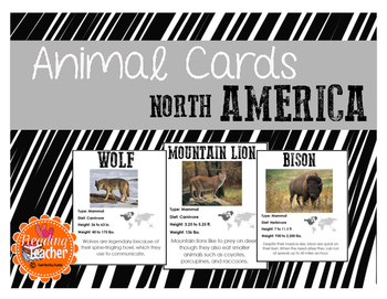 North American Animal Cards