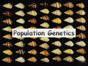 Notes and Activities for Population Genetics
