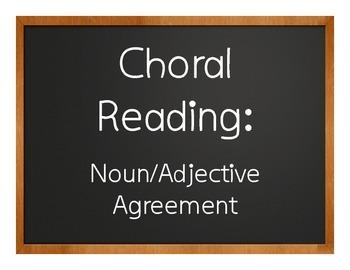 Spanish Noun Adjective Agreement Choral Reading