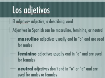 Noun-Adjective Agreement Keynote