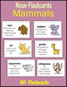 Noun Flashcards:  Mammals