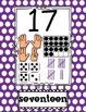 Number Poster 1-20 PRIMARY Polka Dot: tally, dice, ten fra