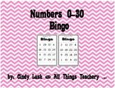 Numbers 0-30 Bingo