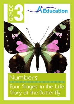 Numbers - Four Stages in the Life Story of the Butterfly -