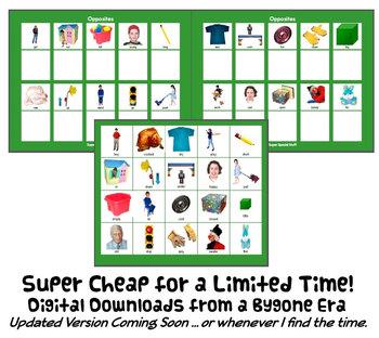 OPPOSITES MaTcH & SoRt w/ 20 PECS Cards : instant digital