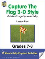 Capture The Flag 3-D Style Lesson Plan (eLesson eBook)