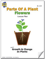 Parts of a Plant - Flowers Lesson Plan